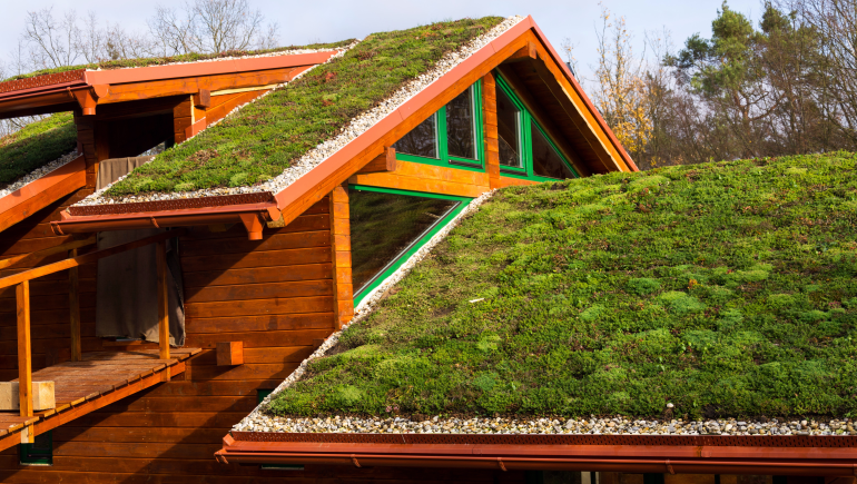 green-roof-770.png