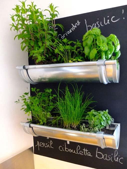 A wall herb garden