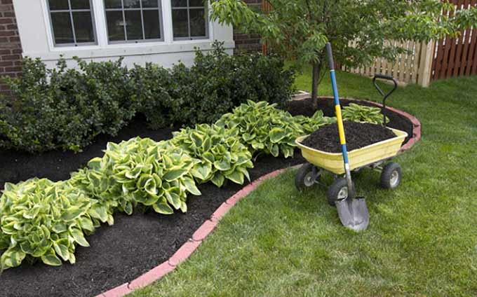 Tips for a Green Lawn and Beautiful Flower Beds - 3