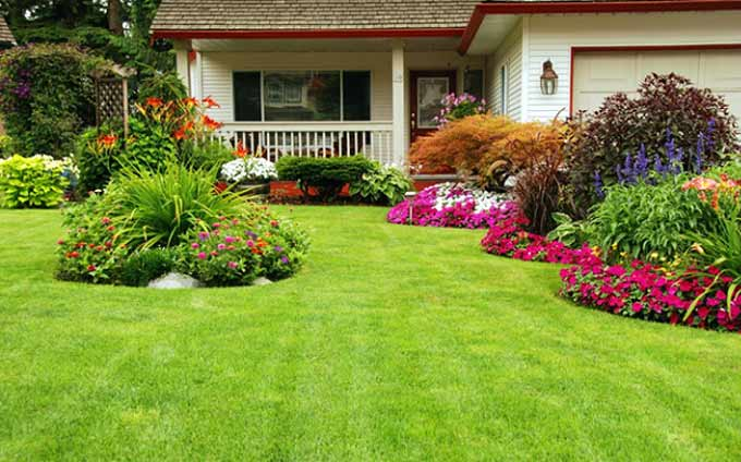 Tips for a Green Lawn and Beautiful Flower Beds - 2