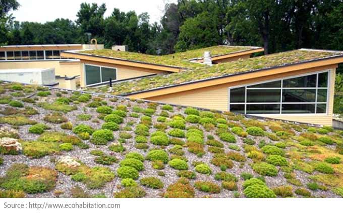 Comment choisir le revêtement de toiture? - Toit végétalisé
