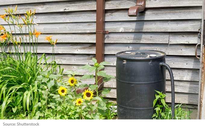 Récupérer l'eau de pluie pour son jardin