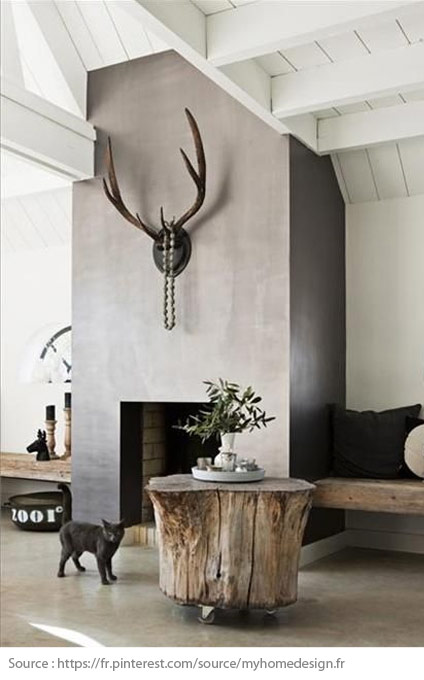 Style scandinave : 2