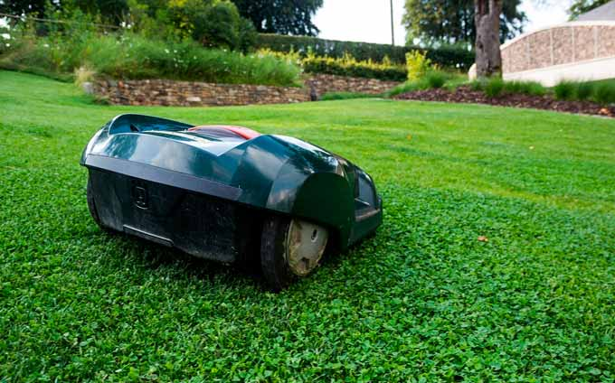 electric or mechanical mower
